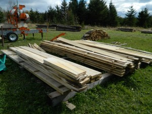 "How To De-Stress ""Stressed-Out"" Trees When Sawmilling"