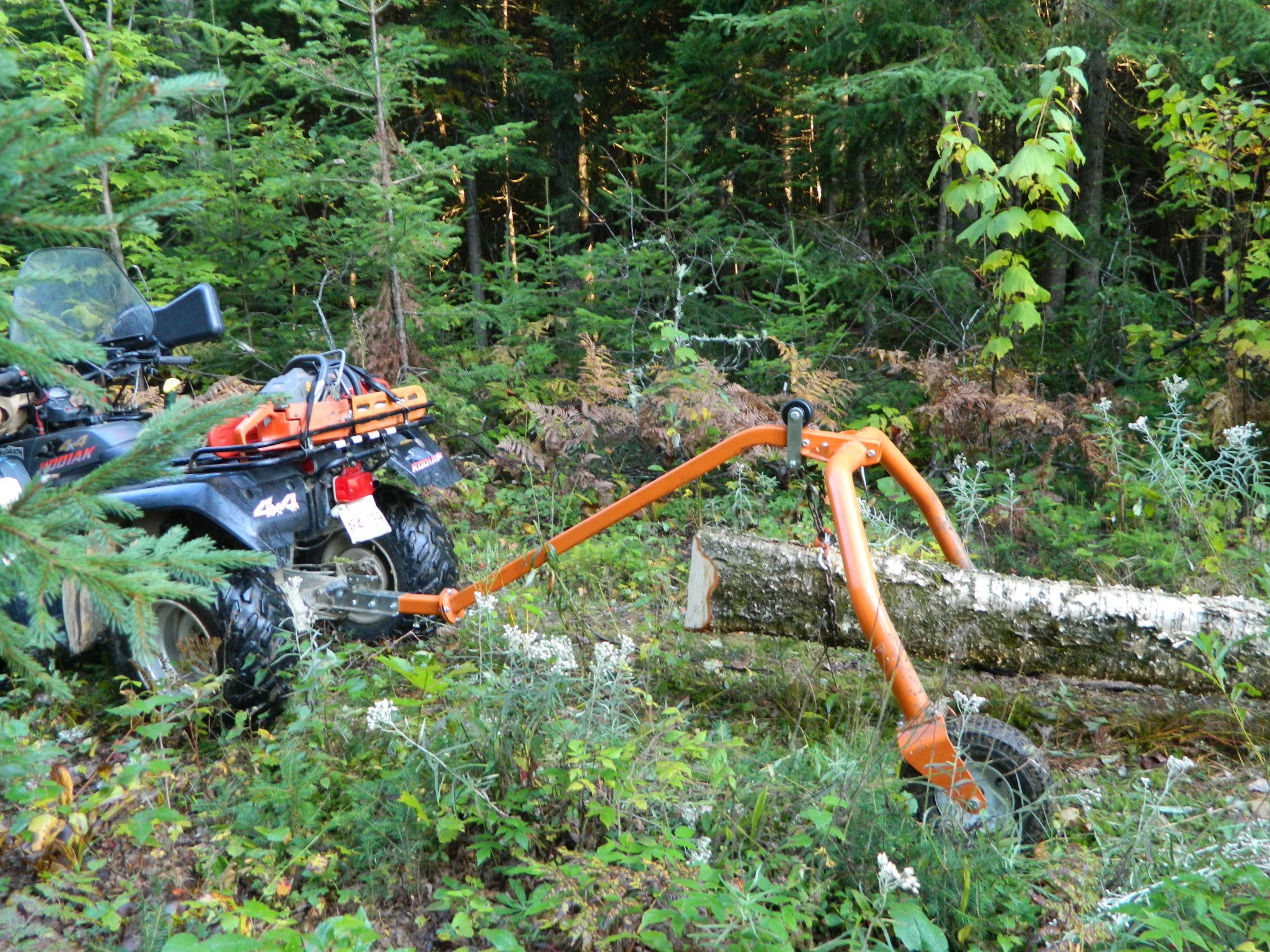 Safely Moving Logs To Your Portable Sawmill Or Firewood Processor
