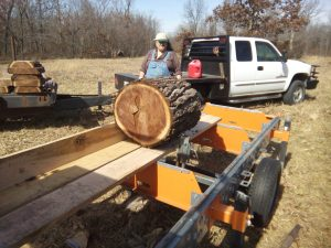 Sawing Oddball Logs