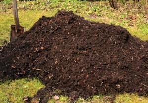 sawmill-compost